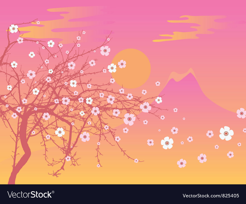 Sakura and fuji vector image