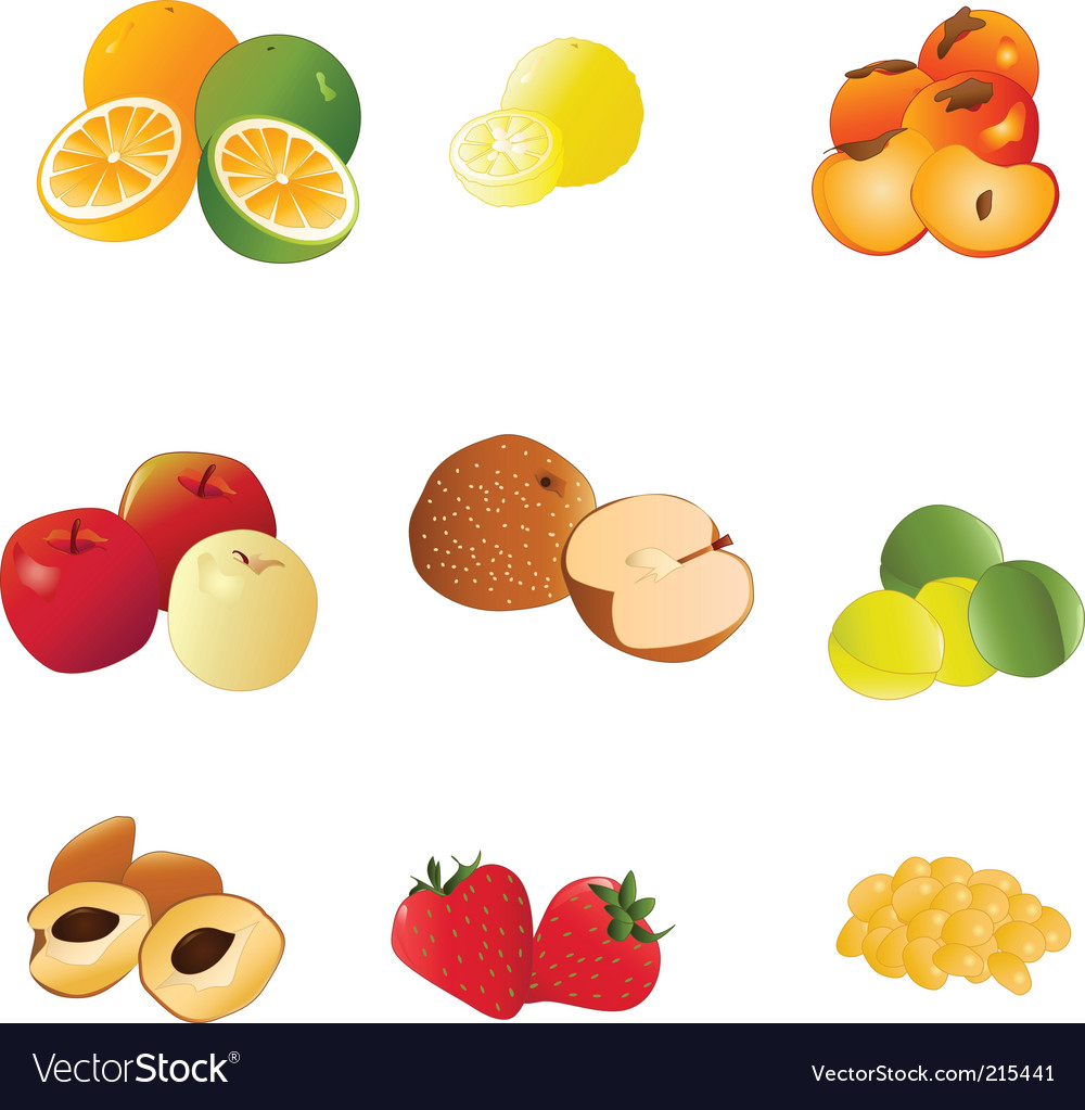 Japanese fruit vector image