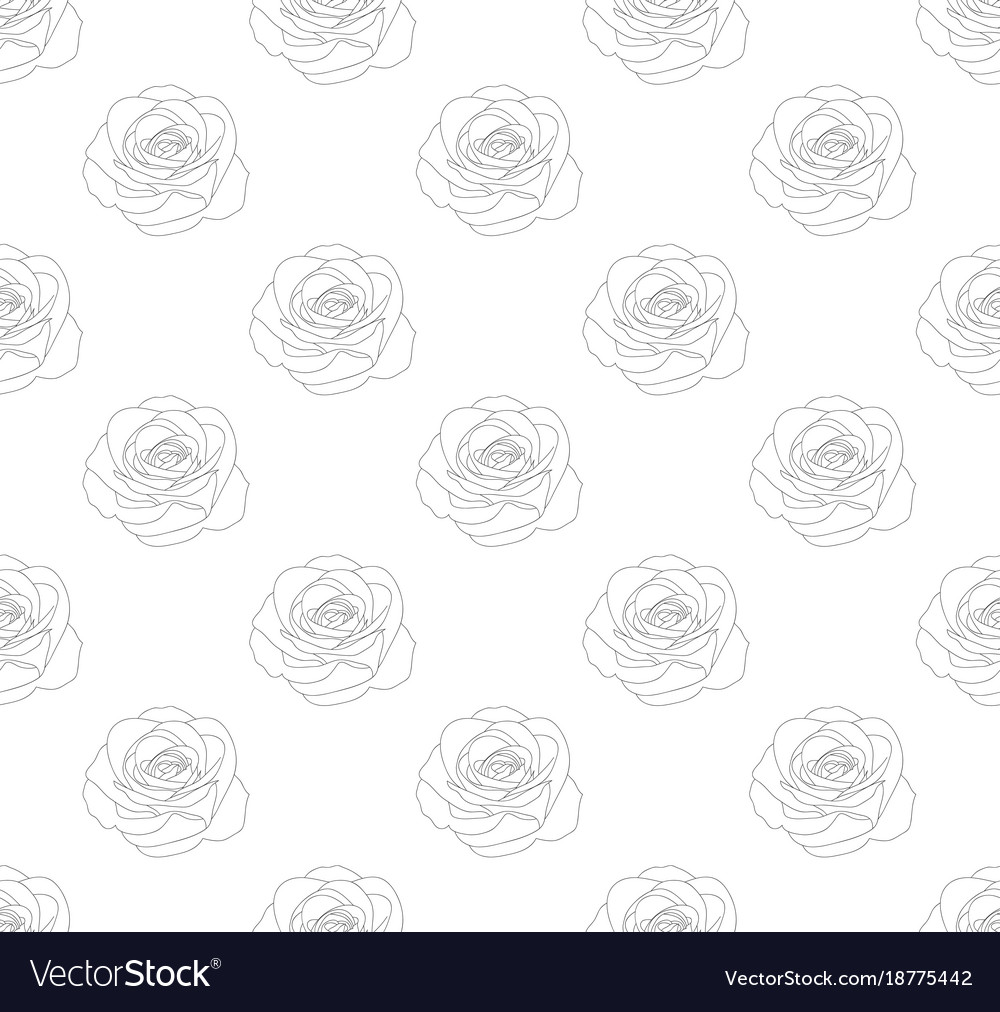 Rose seamless on white background vector image