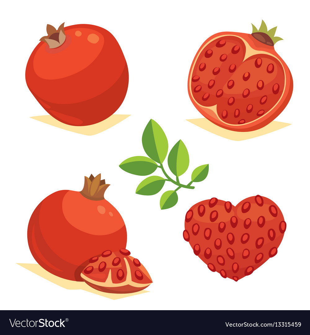 Whole and cut pomegranate icon set cartoon healty vector image