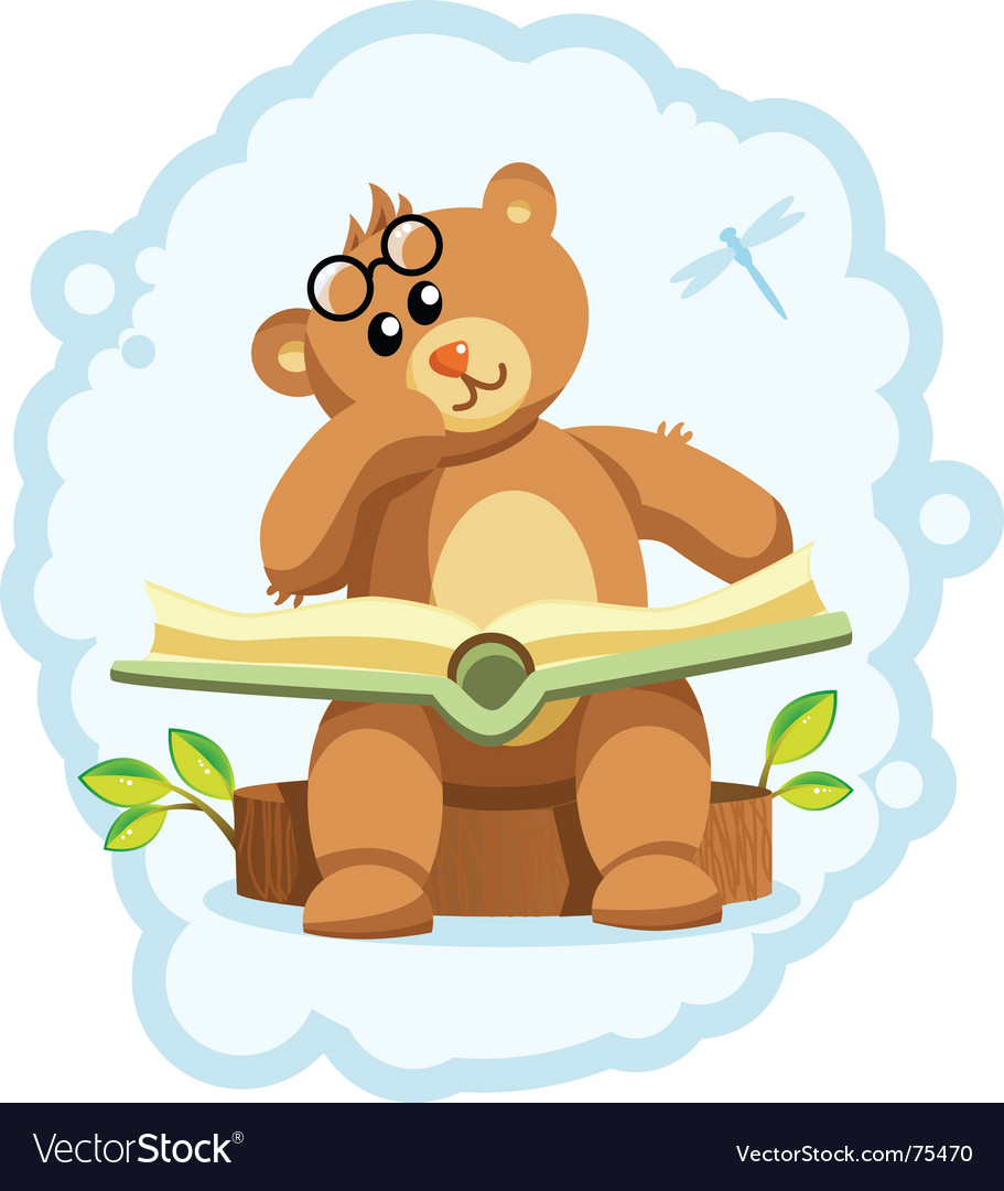 Teddy bear book vector image