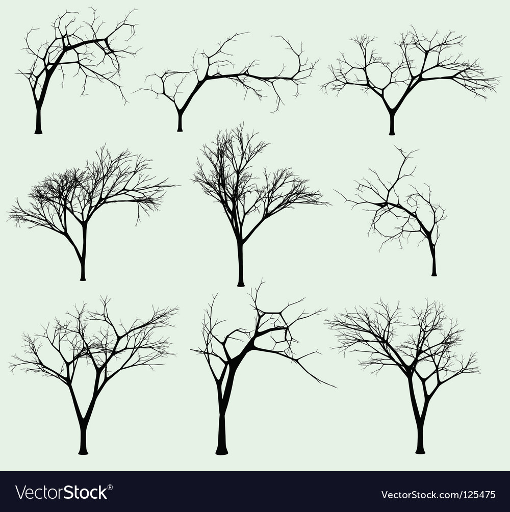 set of silhouettes of trees royalty free vector image