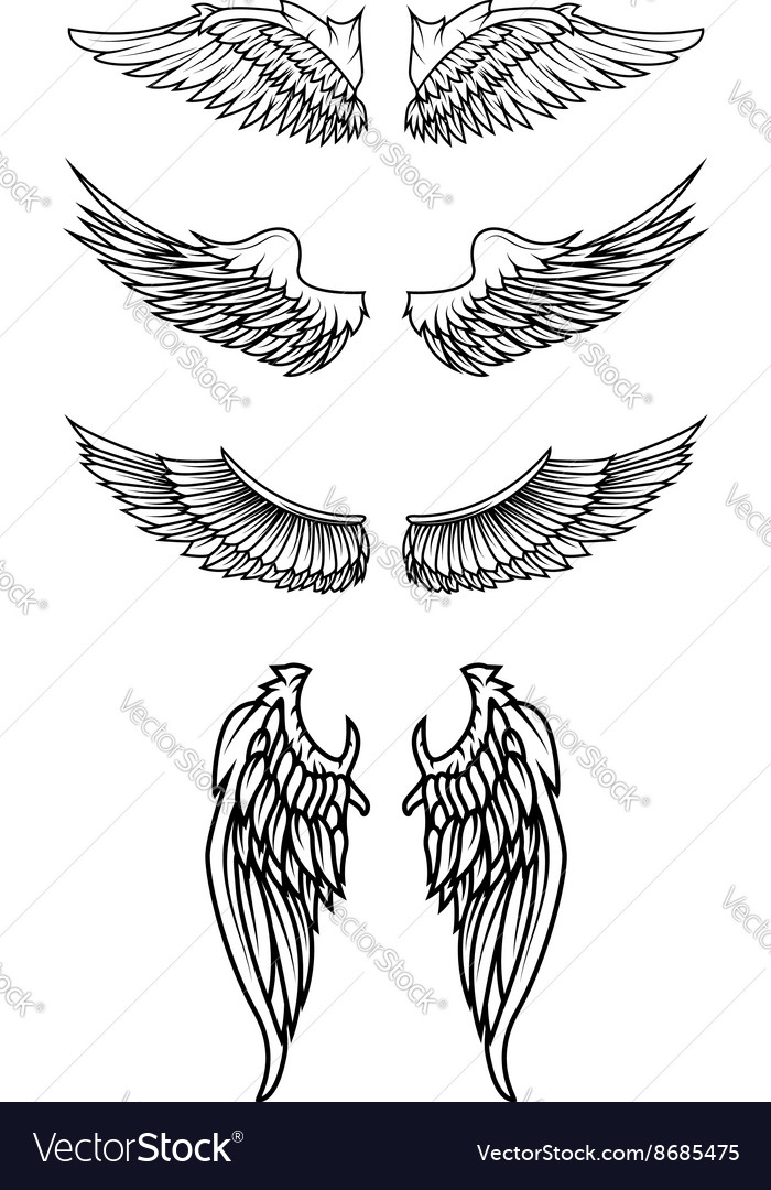 Set of the wings in vector image