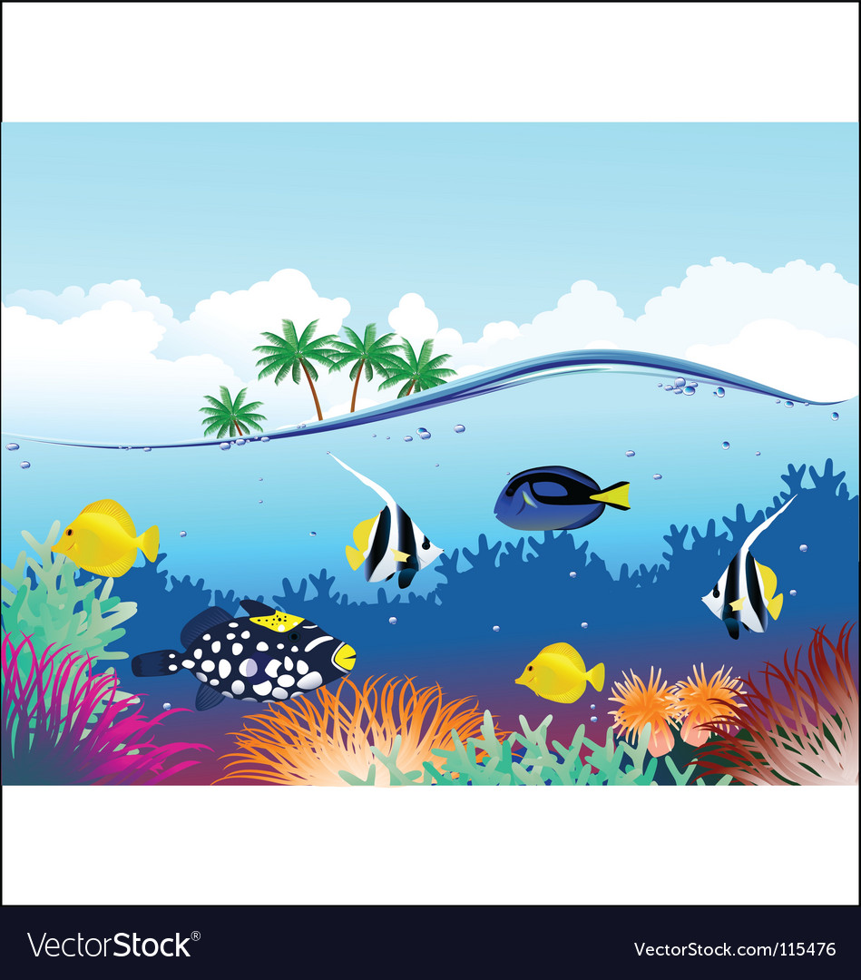 Sealife tropical vector image