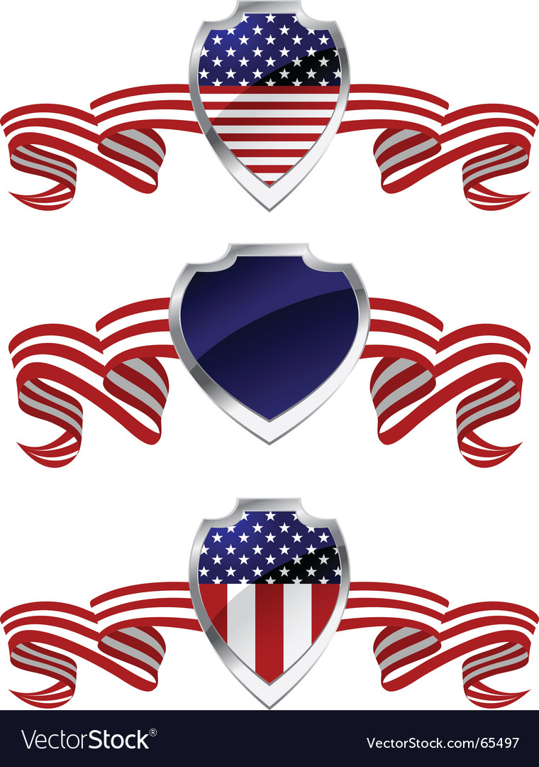 American protection vector image