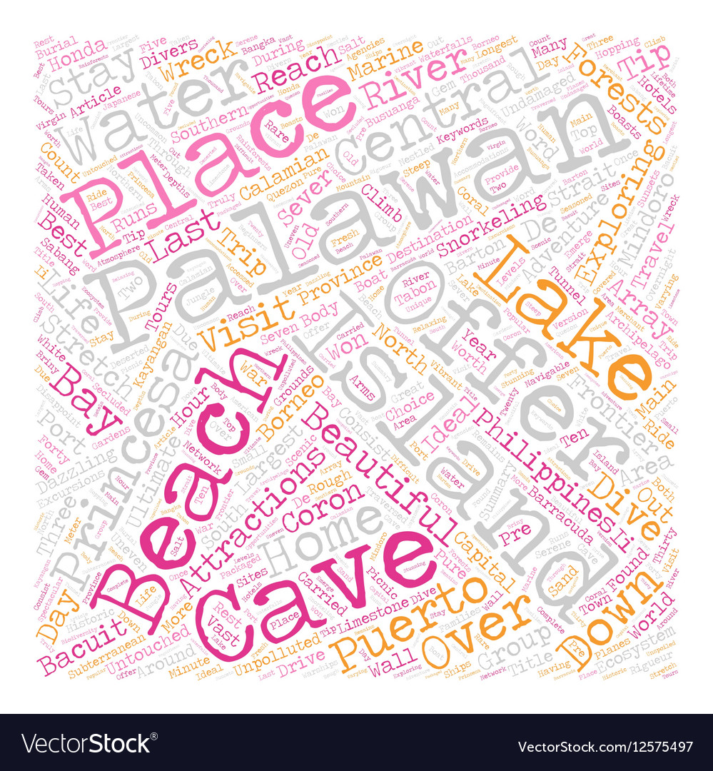 Palawan The Last Frontier text background vector image