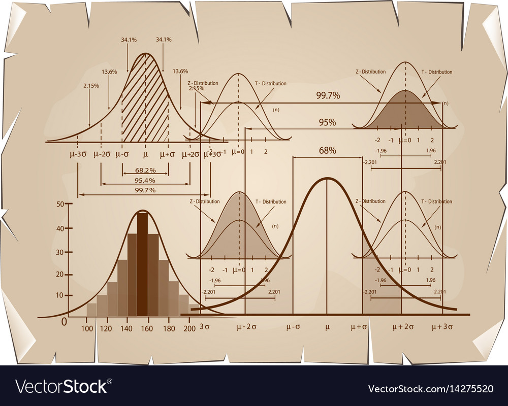 Standard deviation diagram with sample size chart vector image