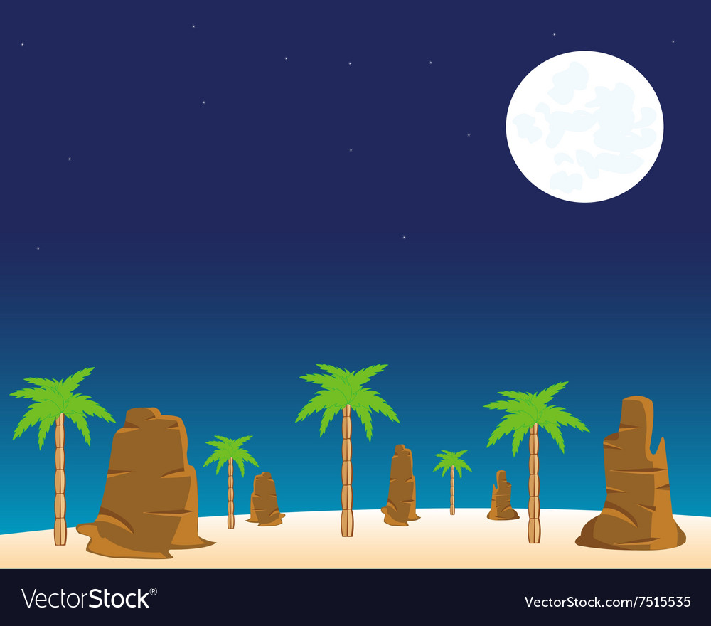 Night in desert vector image