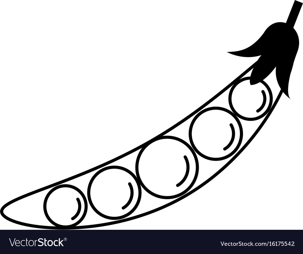 Peas in a pod vegetable icon image vector image
