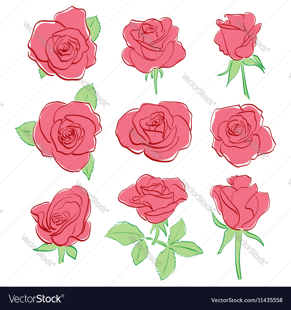 Red beautiful roses - set - hand-drawing vector image