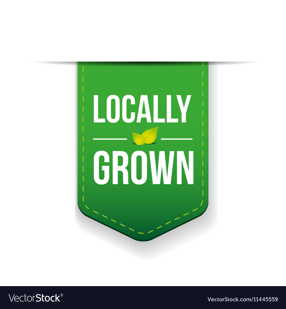Locally Grown green ribbon vector image