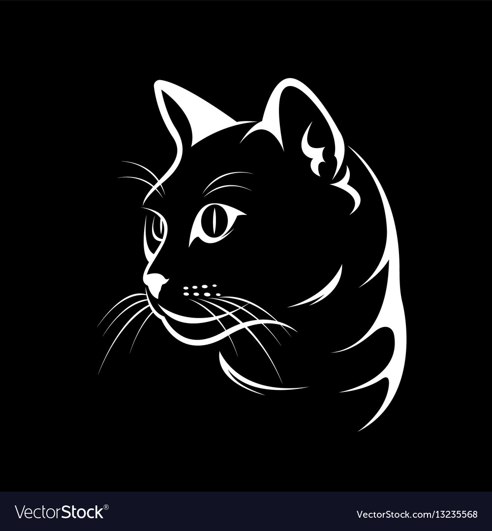 Cat face design on black background vector image