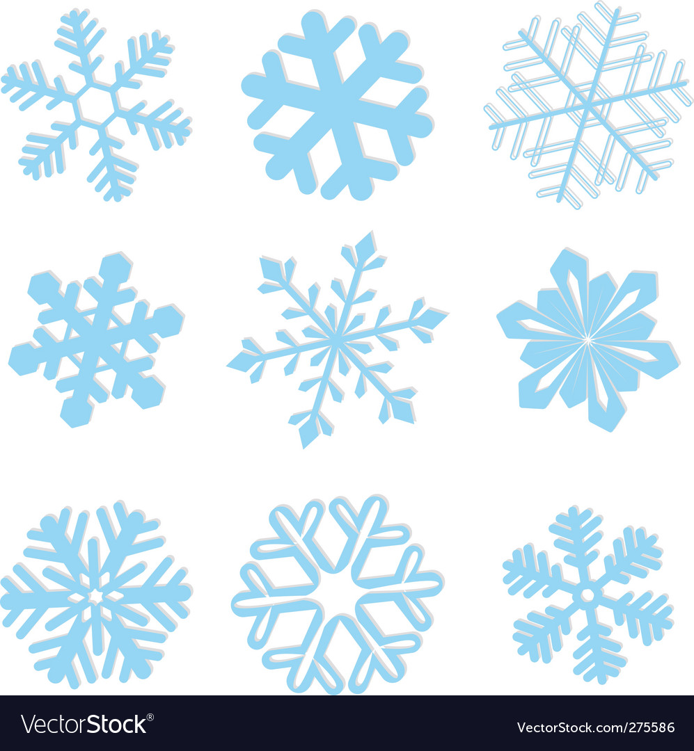 Snowflake winter set illustration vector image