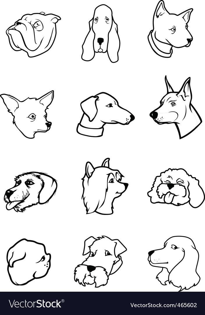 Cartoon dog faces vector image