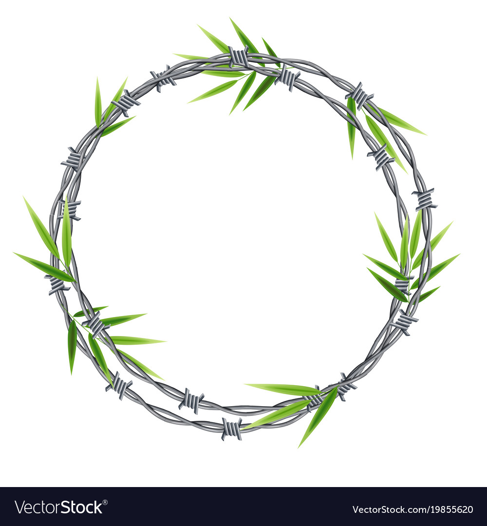 Realistic 3d detailed barbed wire frame vector image