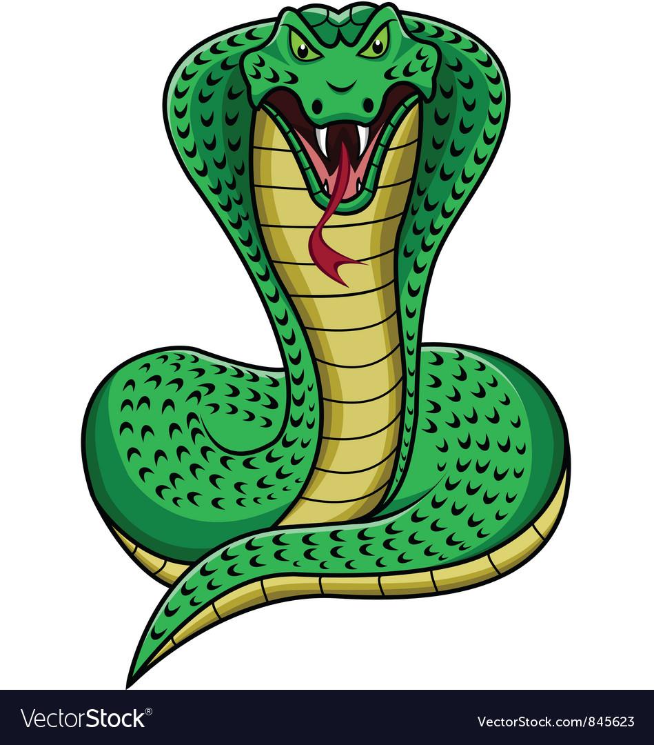 King cobra vector image