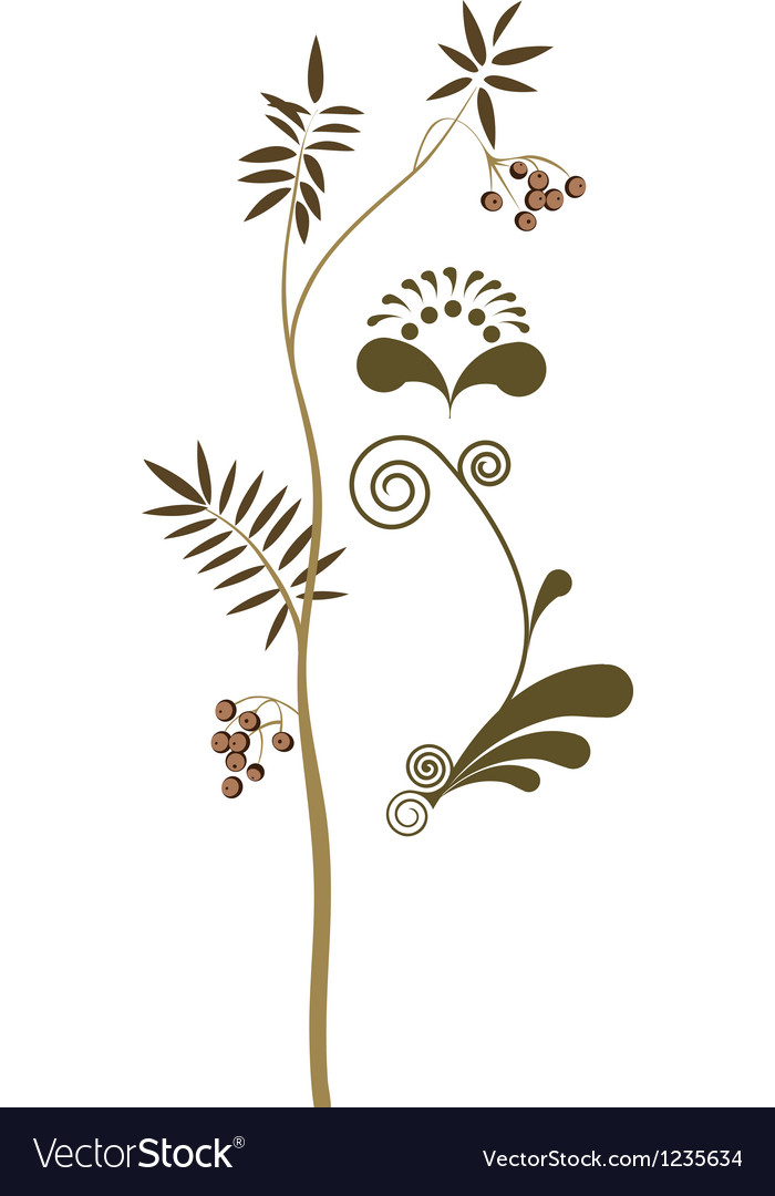 Plant elements of the pattern vector image