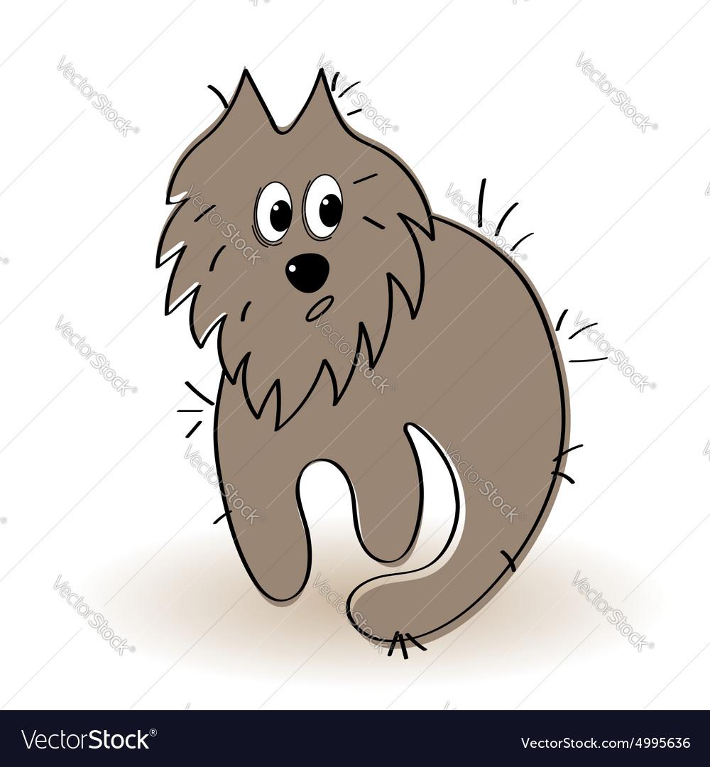 Shaggy and dirty animal vector image