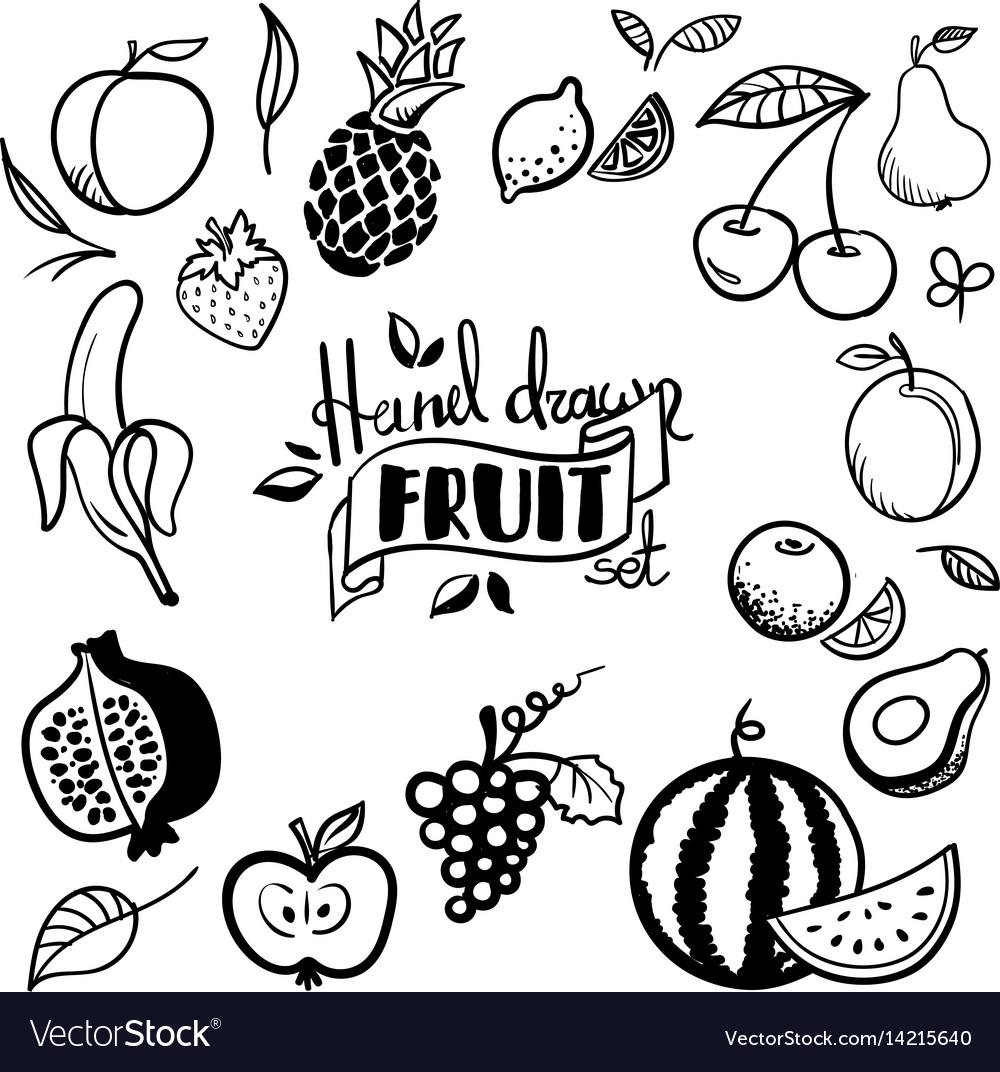 Hand drawn fruits set cherry avocado orange vector image
