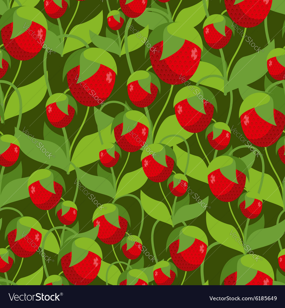 Sweet Strawberry seamless pattern Background of vector image