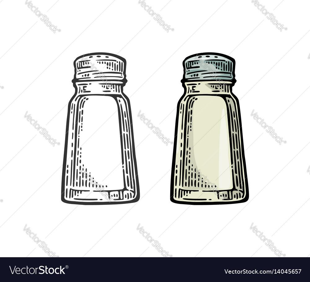 Salt shaker vintage black and color vector image