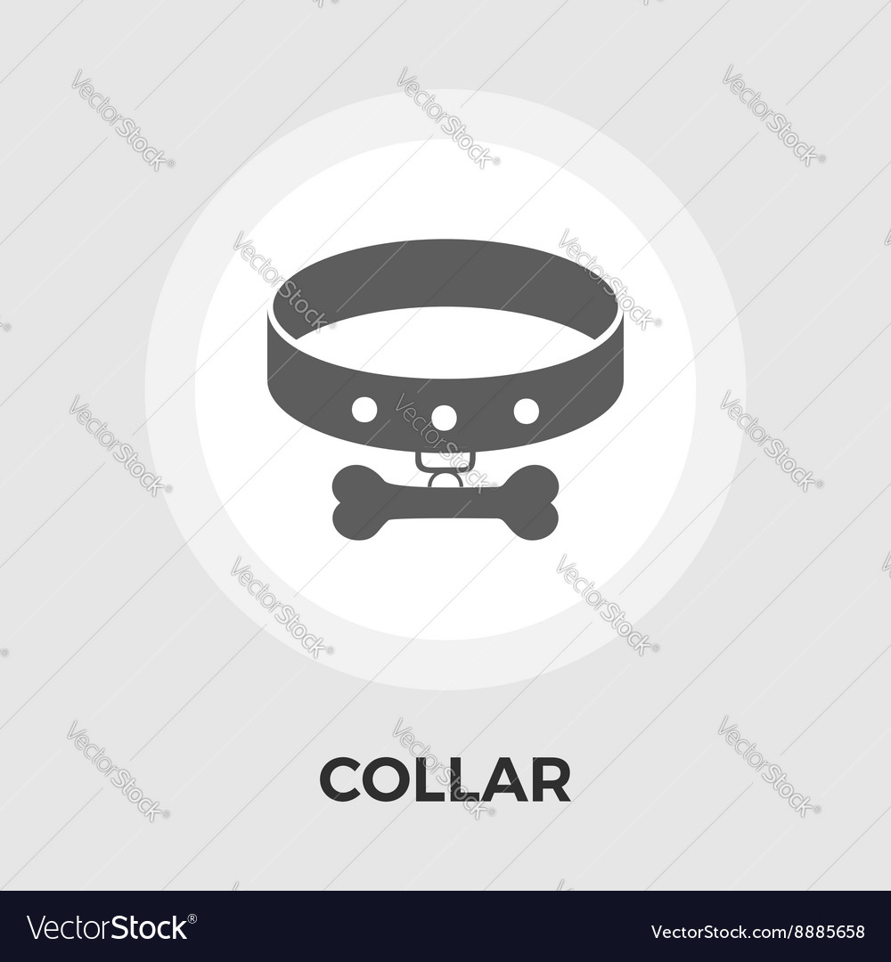 Collar Flat Icon vector image