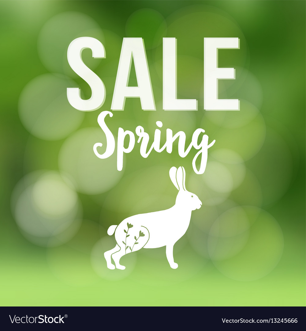 Spring sale poster with blurred background vector image