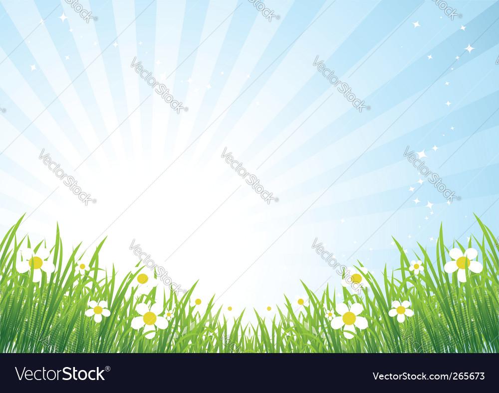 Spring meadow beautiful vector image