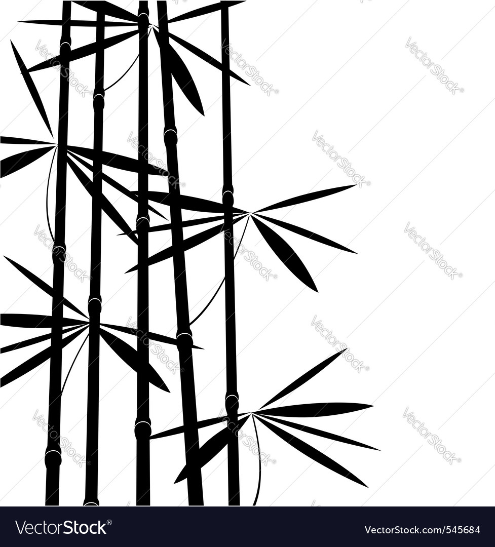 Black and white bamboo vector image