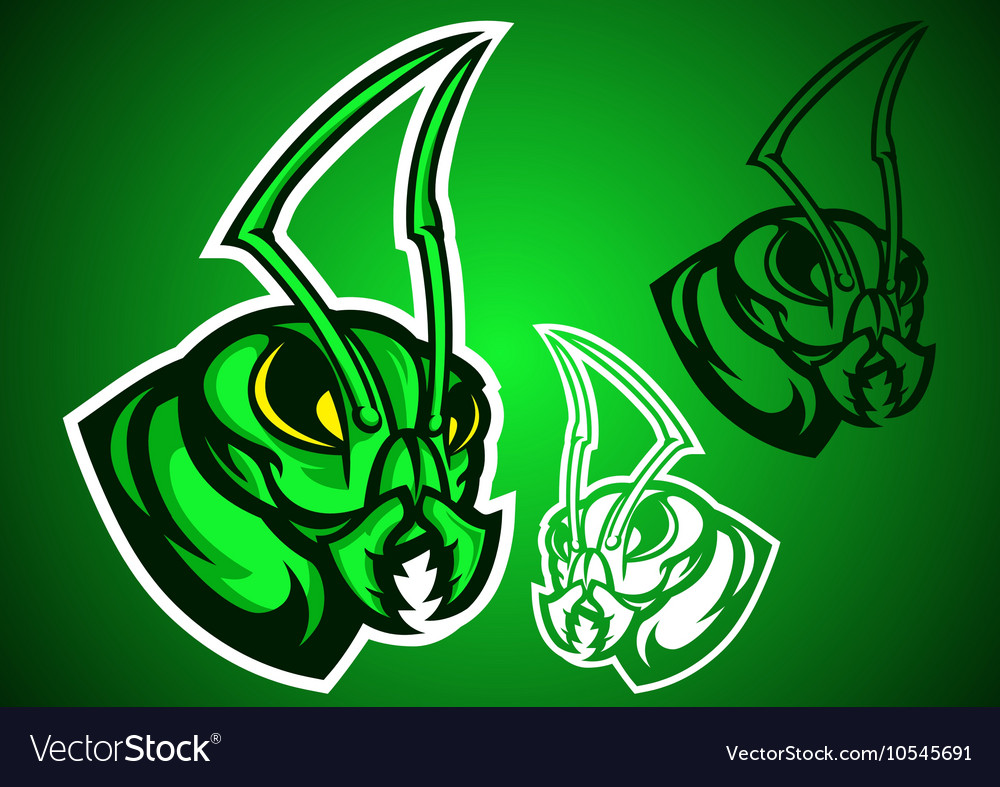 Grasshopper green logo vector image