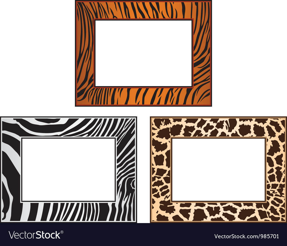 Collection of African framework vector image