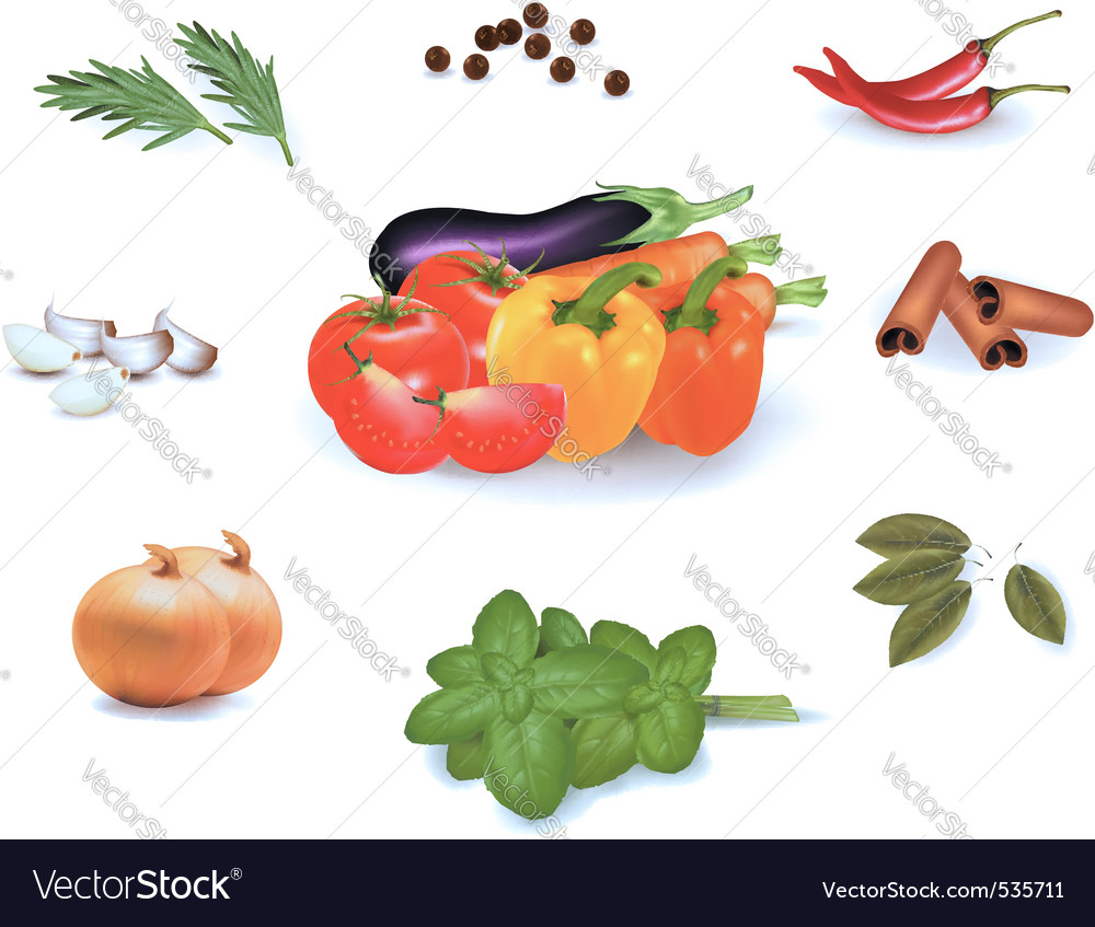 Group of vegetables vector image
