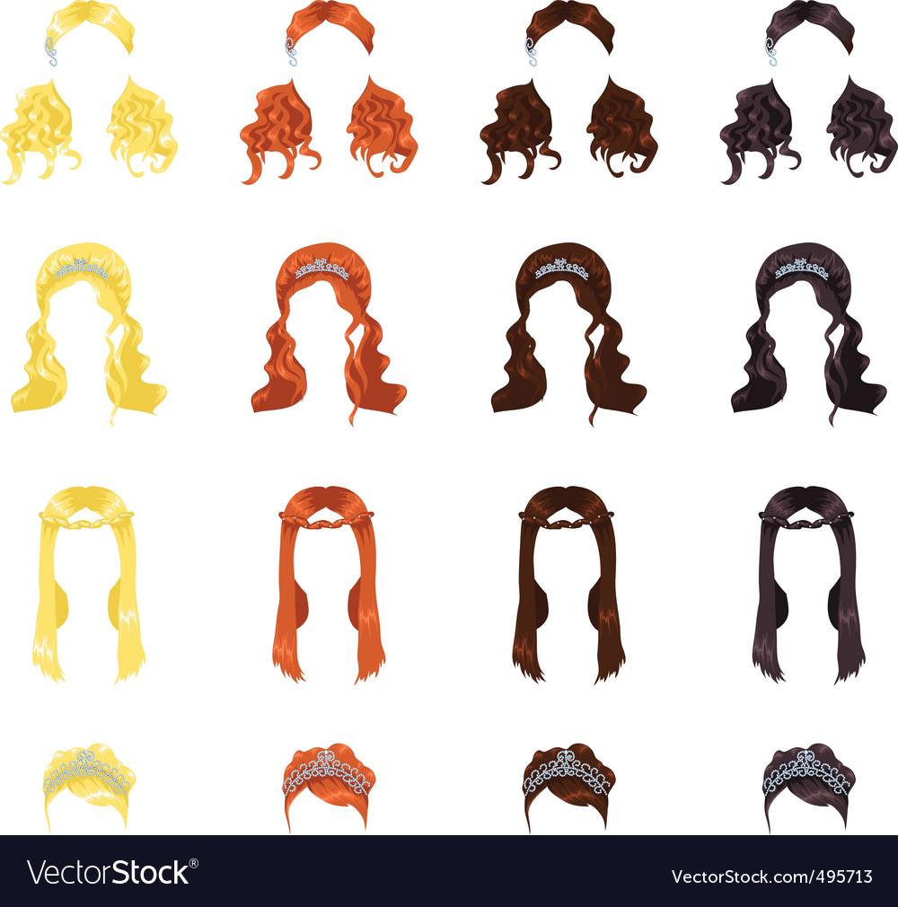 Female hair vector image