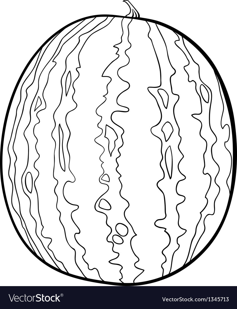 watermelon for coloring book royalty free vector image