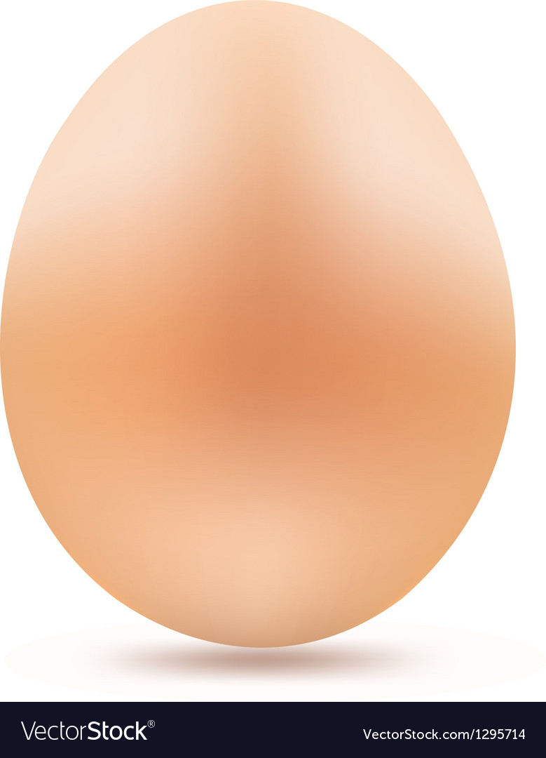 Yellow egg vector image