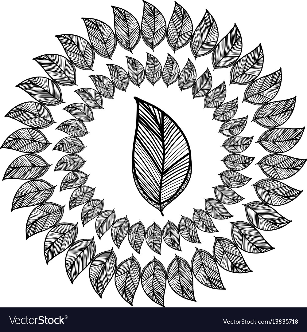 Rustic branch flowers decoration vector image