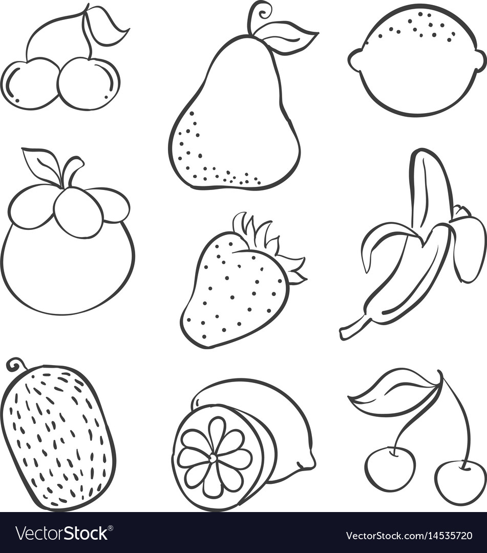 Doodle of fruit various style hand draw vector image