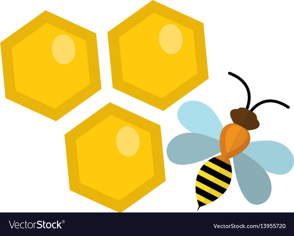 Honeycomb and bee icon flat style isolated on vector image