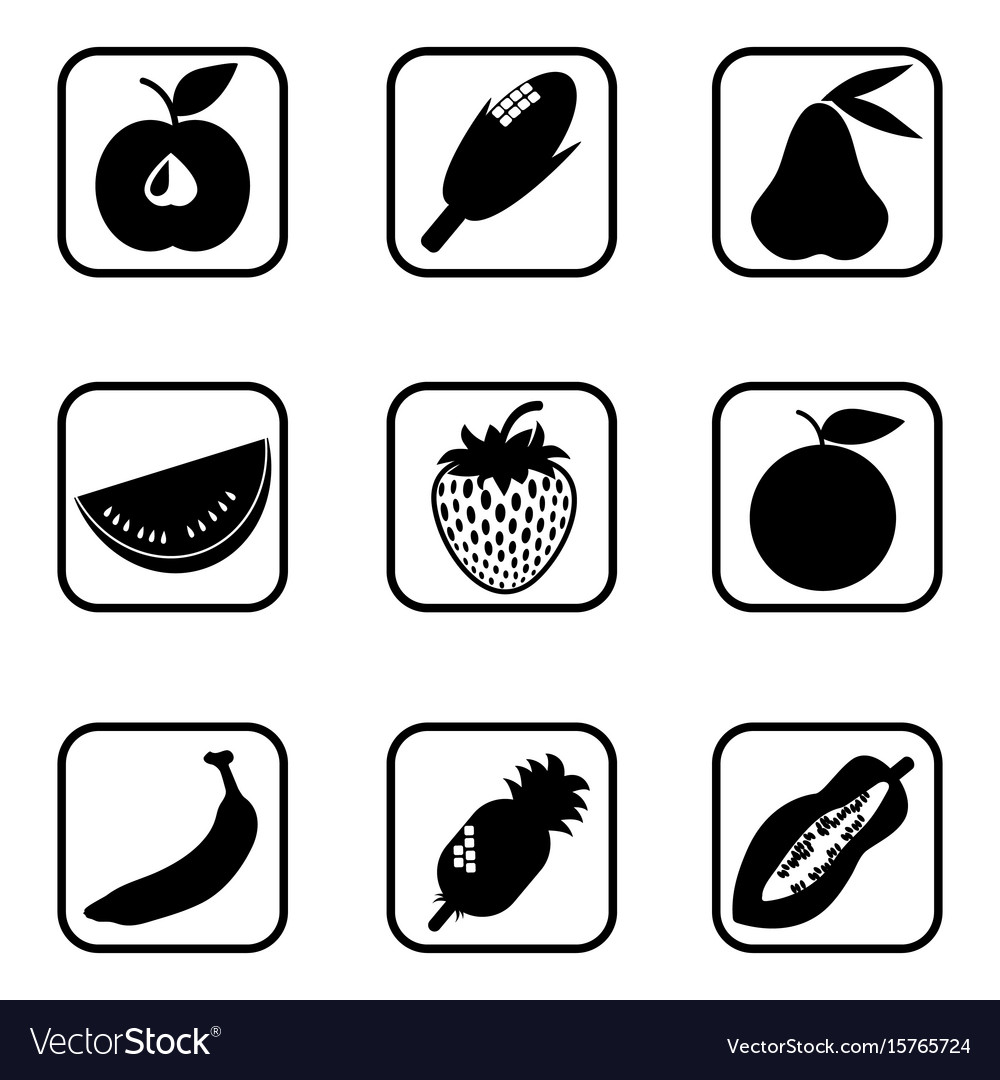 Fruit icons on white background vector image
