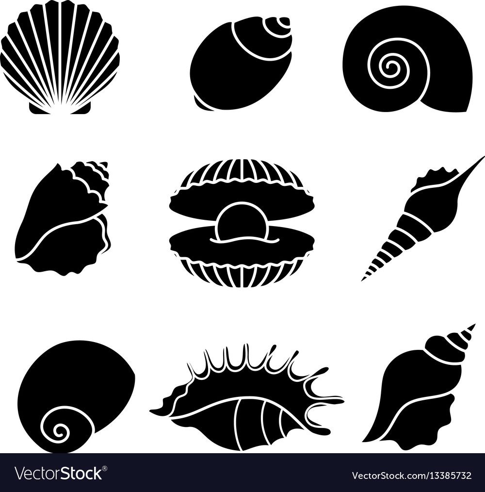 Sea shells silhouettes isolated on white vector image