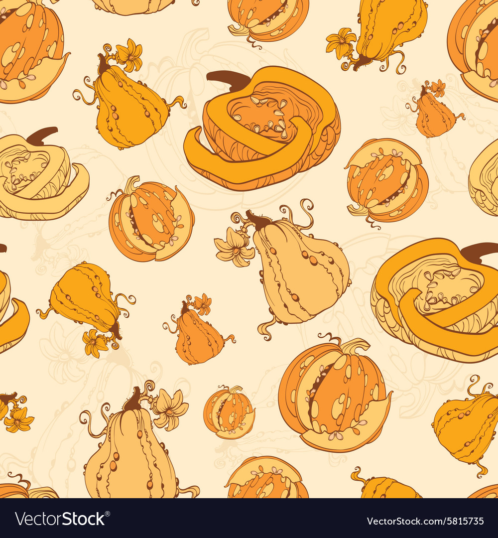 Autumn Pumpkins Harvest Seamless Pattern vector image