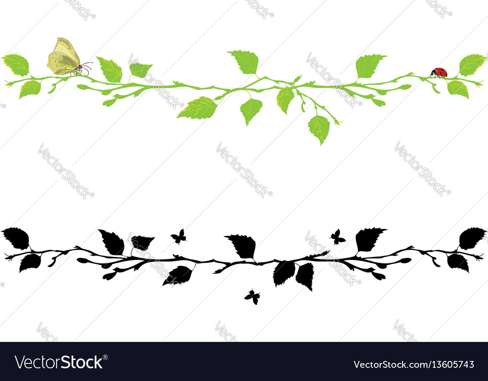 Set of dividing with birch tree vector image