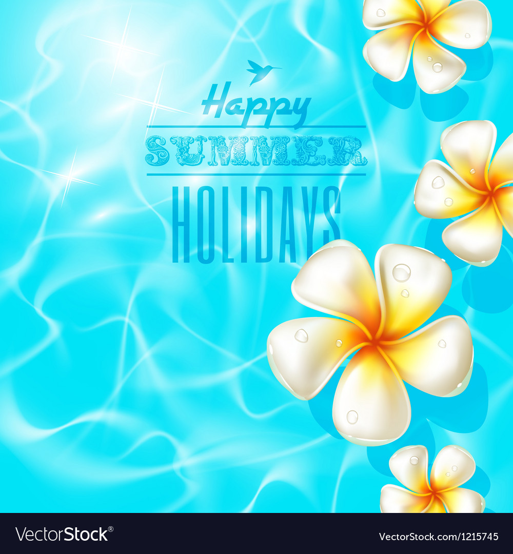 Tropical frangipani flowers floating on clear blue vector image