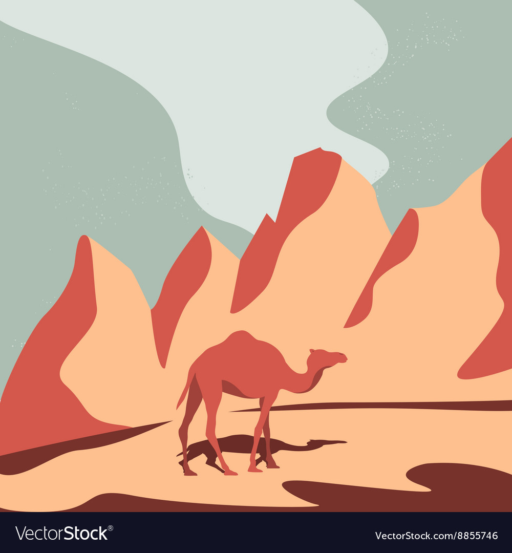 Camel and Desert vector image