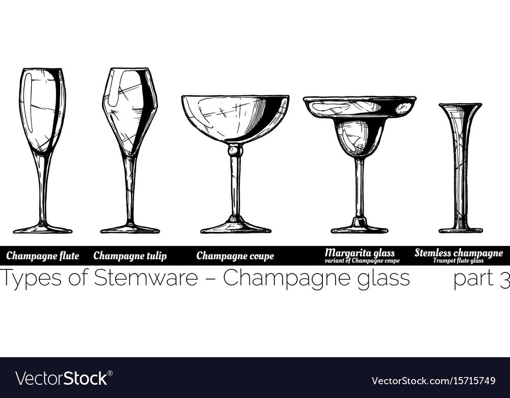 Stemware types vector image