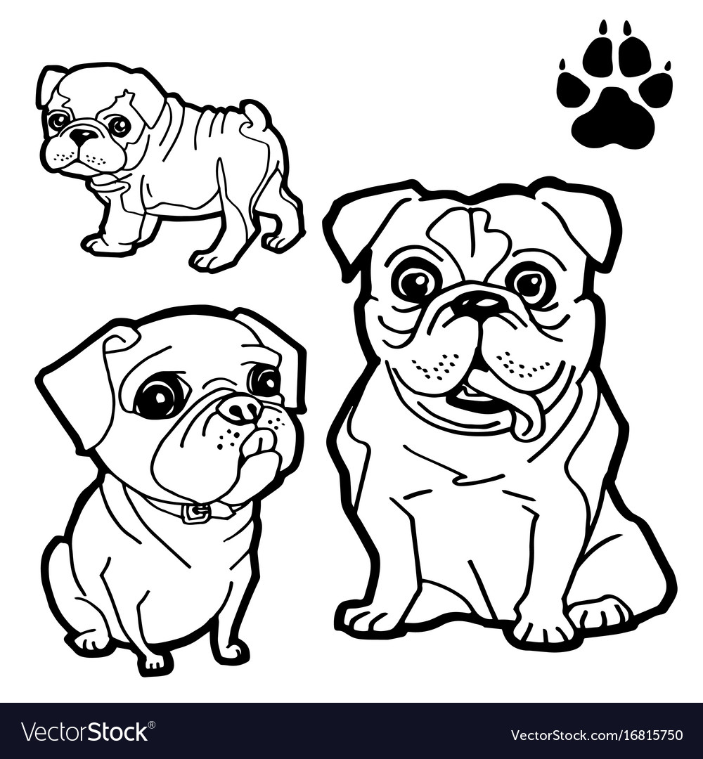 Dog cartoon and dog paw print coloring book Vector Image