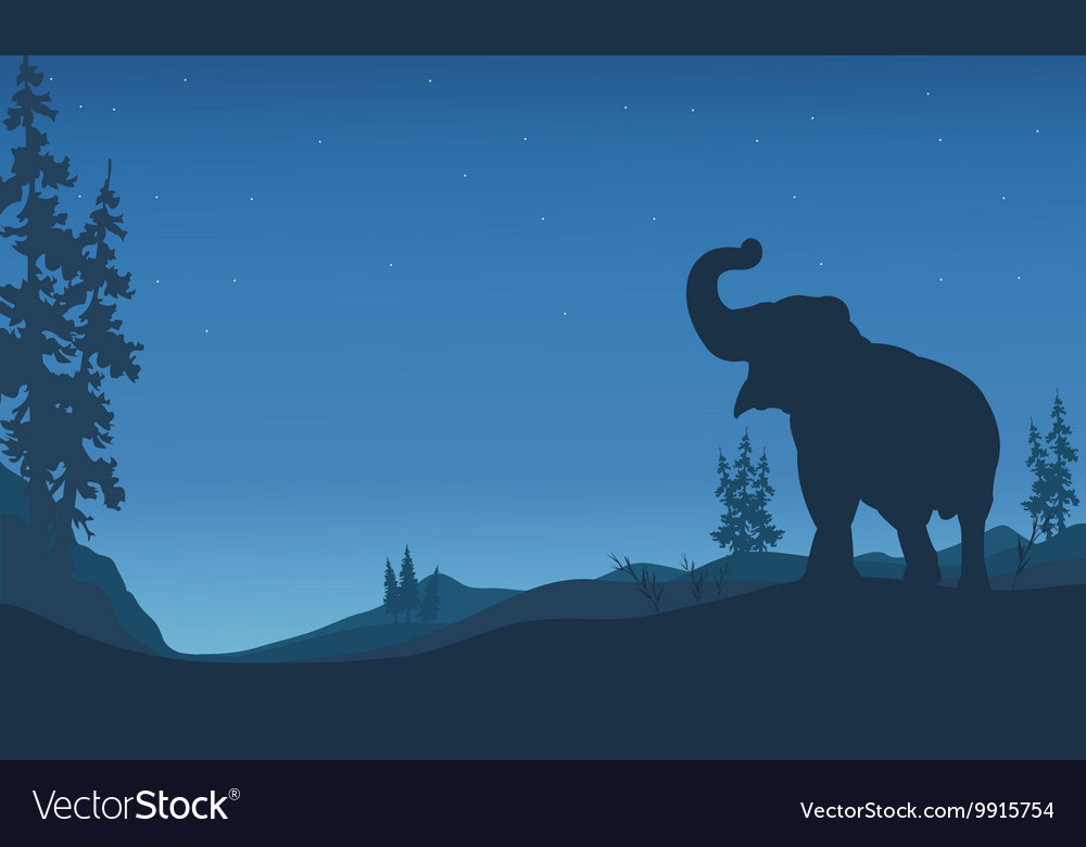 Elephant silhouettes in hill vector image