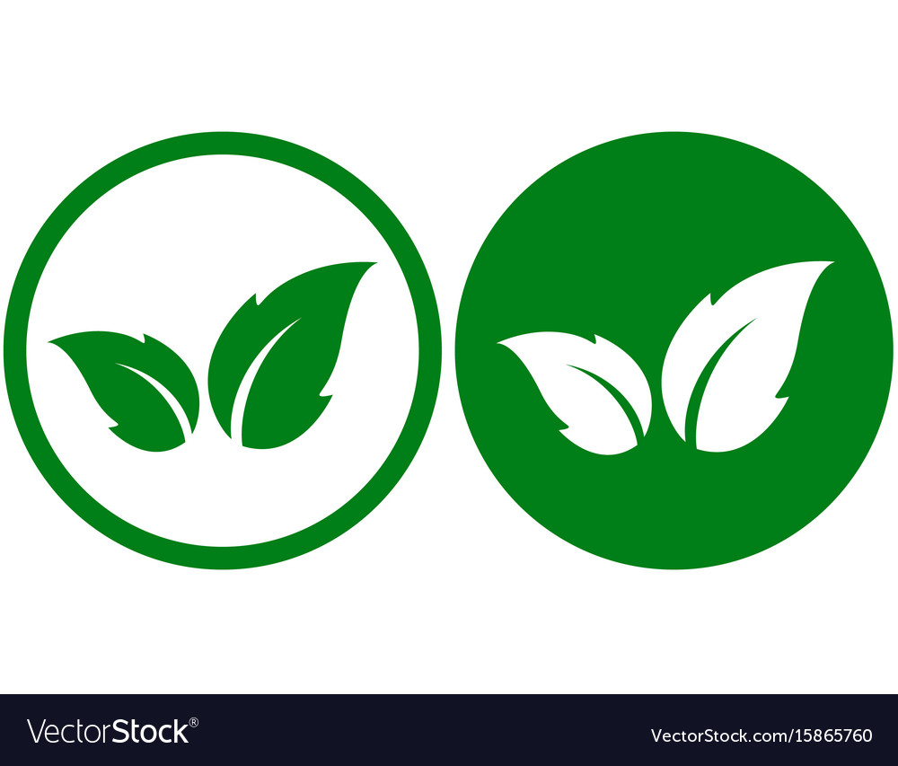 Green icon with leaf vector image