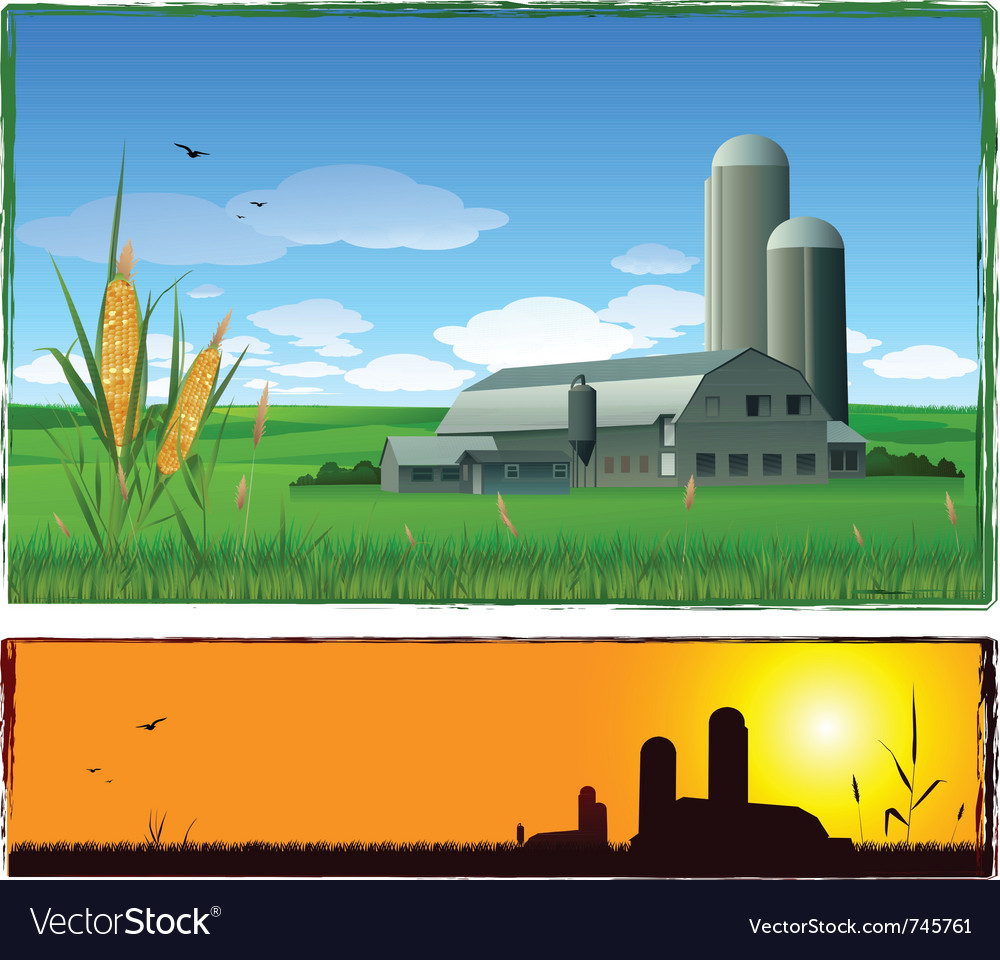Farm harvest background vector image