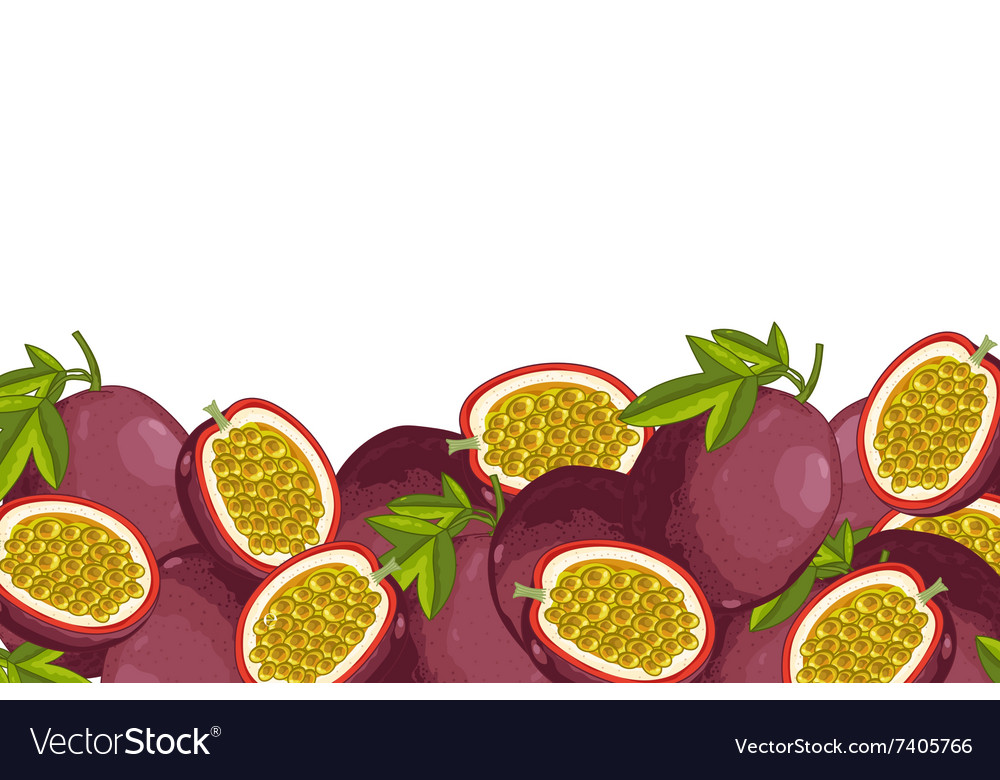 Passion Fruit composition Isolated vector image